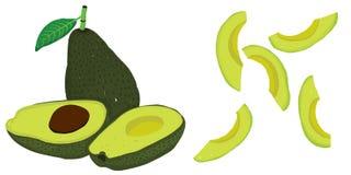 Wektorowy painterly set z avocados editable, rosnący illustrati ilustracja wektor