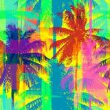 Wektorowy palma wzór Fotografia Stock