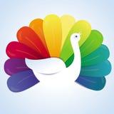 Wektorowy peackok ptak z tęcz piórkami ilustracji