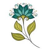 Wektorowy Piękny Barwiony Konturowy kwiat ilustracji