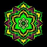 Wektorowy Piękny barwiony kwiecisty odosobniony ilustracja wektor