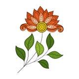 Wektorowy Piękny Barwiony Konturowy kwiat Zdjęcie Royalty Free