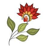 Wektorowy Piękny Barwiony Konturowy kwiat Fotografia Royalty Free