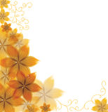 Wektorowy piękny kwiat Obraz Stock