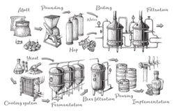 Wektorowy piwny infographics z ilustracjami browaru proces royalty ilustracja