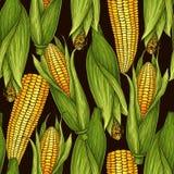 Wektorowy pociągany ręcznie bezszwowy wzór z kukurydzanymi cobs zdjęcia royalty free