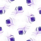 Wektorowy projekt bezszwowy wzór z purpurowymi pawimi piórkami Zdjęcie Royalty Free