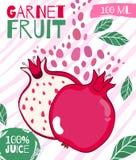 Wektorowy projekt dla pakować granatowa sok Pociągany ręcznie karmowy plakat dla rolnej świeżej żywności ilustracja wektor