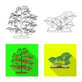 Wektorowy projekt szklarni i rośliny logo Kolekcja szklarni i ogródu wektorowa ikona dla zapasu royalty ilustracja