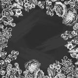 Wektorowy projekt z ręka rysującą gałąź, liśćmi, różami, jagodami, ogrodowymi roślinami i kwiatami, Rocznik rama z botanicznym ilustracji