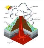 Wektorowy przekrój poprzeczny przez wulkanu ilustracja wektor