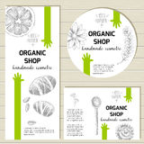 Wektorowy przygotowywający projekta szablon dla organicznie kosmetycznych produktów, ręka Fotografia Stock