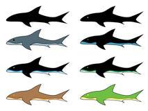 Wektorowy rekin Zdjęcie Stock