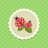 Wektorowy rocznika Ladybird majcher na Kropkowanym tle Obraz Royalty Free