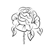 Wektorowy rysunek róża tatuaż, logo Obraz Royalty Free