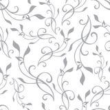Wektorowy Swirly Rozgałęzia się Szarego rocznika Bezszwowego Obraz Royalty Free