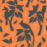 Wektorowy sylwetka wzór z egzotycznymi ptakami na terakotowym tle ilustracja wektor