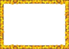 Wektorowy szablon jesień liści projekt ilustracja wektor