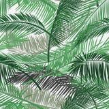 Wektorowy tło z dwa warstwami tropikalny ulistnienie Palma liści wzór Bezszwowy wektoru wzór dla druku projekta, tapeta, s obrazy royalty free