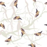 Wektorowy tło z ptakami Zdjęcie Stock