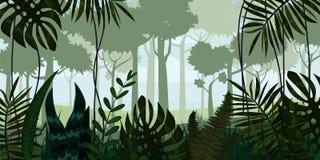 Wektorowy tropikalny tropikalny las deszczowy dżungli krajobrazu tło z liśćmi, paproć, ilustracje ilustracja wektor
