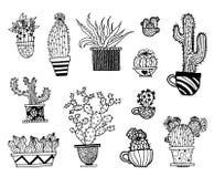 Wektorowy ustawiający ręka rysujący kaktus Nakreślenie ilustracja Różny kaktusa monochromu styl ilustracji