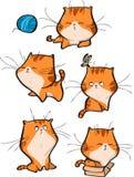 Wektorowy ustawiający śliczni pomarańczowi tabby kota charaktery w różnych akcj pozach odizolowywać na białym tle royalty ilustracja