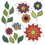 Wektorowy Ustawiający Barwioni Konturowi kwiaty i liście Zdjęcia Stock
