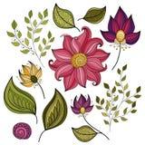 Wektorowy Ustawiający Barwioni Konturowi kwiaty i liście royalty ilustracja