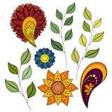 Wektorowy Ustawiający Barwioni Konturowi kwiaty i liście ilustracji