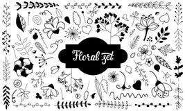 Wektorowy ustawiający doodle kwiaty czarny white royalty ilustracja