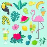 Wektorowy ustawiający lata przyjęcia ikony z tropikalnymi ptakami, owoc, kwiatami i koktajlem, Zdjęcie Royalty Free
