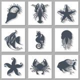 Wektorowy Ustawiający Ozdobne Dennych zwierząt ikony z Długim cieniem ilustracji