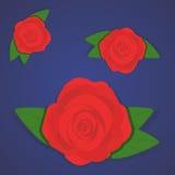 Wektorowy ustawiający piękne czerwone róże na gradientowym błękitnym tle Ilustracji
