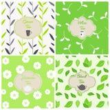 Wektorowy ustawiający projektów elementy, bezszwowi wzory i ikony w modnym liniowym stylu, Biel, jaśmin, czerń i zielona herbata, ilustracja wektor