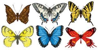 Wektorowy ustawiający różnorodni jaskrawi kolorowi motyle ilustracji