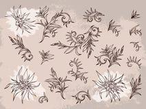 Wektorowy ustawiający ręka rysująca kwitnie, rozgałęzia się i opuszcza z textured akwarela elementem, Obraz Royalty Free