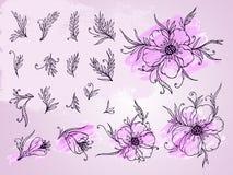 Wektorowy ustawiający ręka rysująca kwitnie, rozgałęzia się i opuszcza z textured akwarela elementem, Fotografia Stock