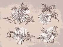 Wektorowy ustawiający ręka rysująca kwitnie, rozgałęzia się i opuszcza z textured akwarela elementem, Obrazy Royalty Free