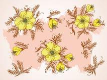Wektorowy ustawiający ręka rysująca kwitnie, rozgałęzia się i opuszcza z textured akwarela elementem, Obraz Stock