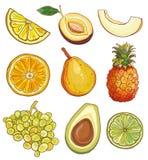 Wektorowy ustawiający z owoc i jagodami: kolor żółty, zieleń i pomarańcze, Obrazy Stock