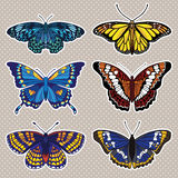 Wektorowy ustawiający z sześć motylami Obrazy Stock