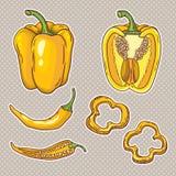 Wektorowy ustawiający z warzywami: pieprze odizolowywający na bielu Obrazy Royalty Free