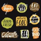 Wektorowy ustawiający z zdrowym, eco i żywność organiczna etykietkami, Zdjęcia Stock