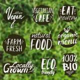 Wektorowy ustawiający z zdrowym, eco i żywność organiczna etykietkami, Fotografia Royalty Free