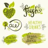Wektorowy ustawiający zdrowe żywność organiczna etykietki Zdjęcia Stock