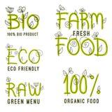 Wektorowy ustawiający zdrowe żywność organiczna etykietki Fotografia Stock