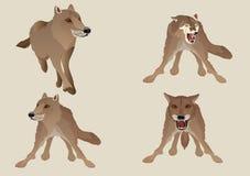 Wektorowy ustawiający wilki isoalated na bielu ilustracji