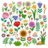 Wektorowy ustawiający z kwiatami Obrazy Stock