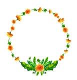 Wektorowy wianek, okrąg rama z akwarelą kwitnie Fotografia Stock